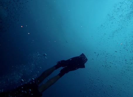 Dive for light: Embrace or Break a Rut.