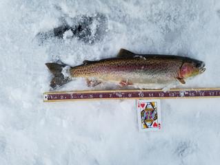 Big Lake: Still Cold Open Ice Fishing Tournament Recap Day 1