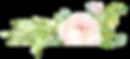 FLOR_CABECALHO.png