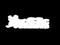 logo-cE3c-Cores-fundo-transparente_squar