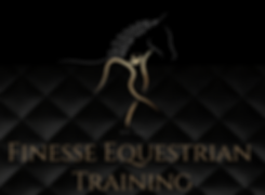 Finesse EquestrianTraining.png