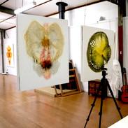 Artist Studio - Healesville
