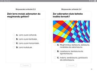 Irudiaren egitura iBookaren orria_2 (2).