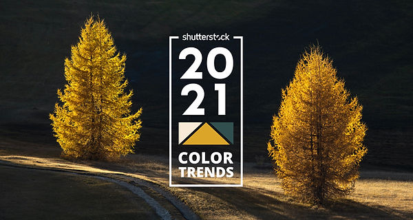worlds-most-popular-color-trends-2021.jpg