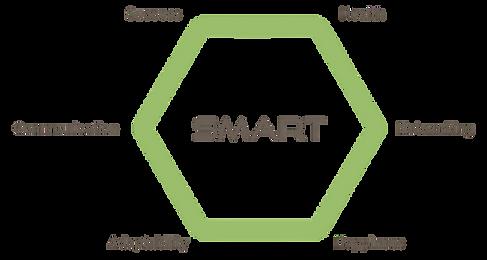 SMART Success factors_transparent.png