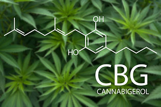 CBG-Cannabigerol-Molecule-1.jpg