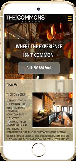 Express app Restaurant The Commons sample Platinum Edge Media