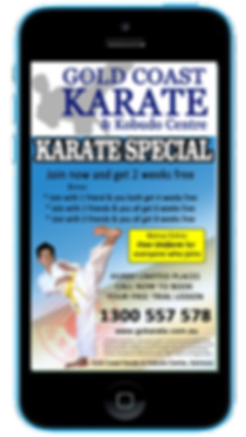 Express app martial arts visual text promotions sample Platinum Edge Media