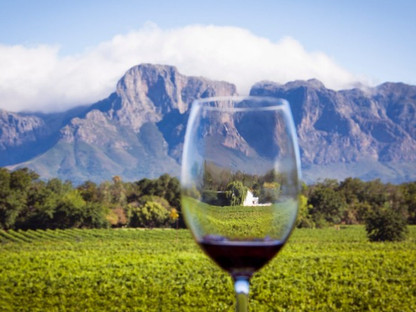Wine Safaris