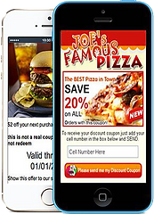 SMS text promotions visual promos coupons platinum edge media