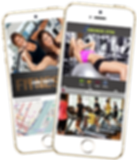 Gym Personal Trainer Mobile App Sample Platinum Edge Media