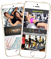 Express app Gym Fitness Trainer sample Platinum Edge Media