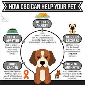 CBD Help Pets