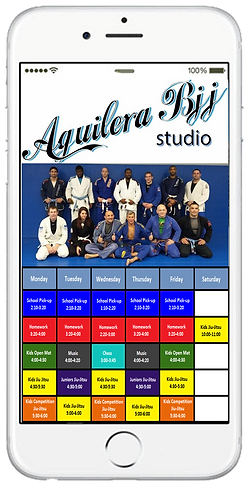 Express app  Martial arts studio sample Platinum Edge Media