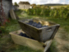 private-luxury-guided-loire-valley-cogna