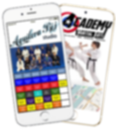 Express app Martial Arts Self Defense sample Platinum Edge Media