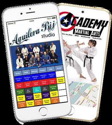 Express app Martial Arts Self Defense sample Platinum Edge Media