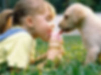 kidsanddogs1_edited.jpg