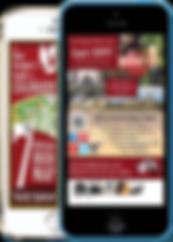 Custom Mobile app sample Platinum Edge Media