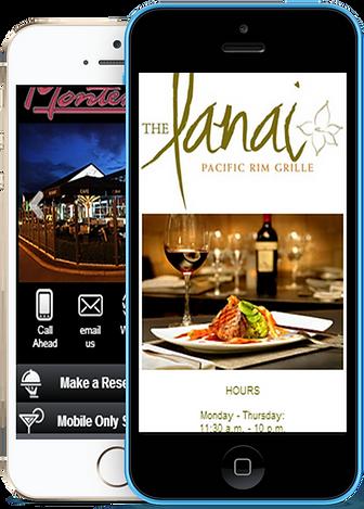 Express app Restaurant bar sample Platinum Edge Media