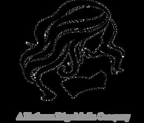 My Model Portfolio App logo- Platinum Edge Media