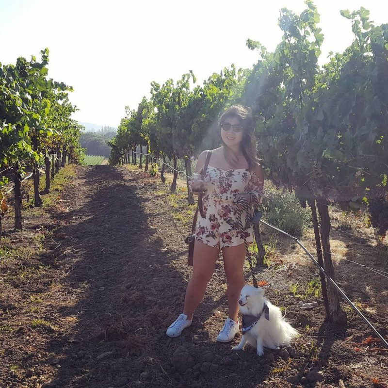 Gundlach Bundschu Winery, Sonoma