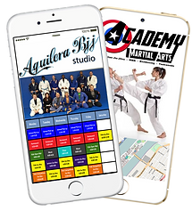 Express appMartial arts studio sample Platinum Edge Media