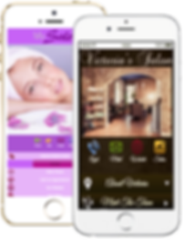 Express app Hair nail salon sample Platinum Edge Media
