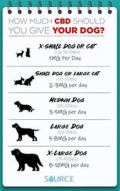 CBD Dosage Pets