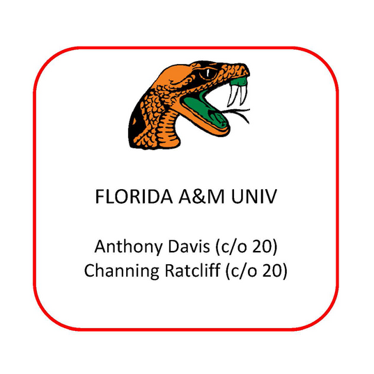florida A&M.png
