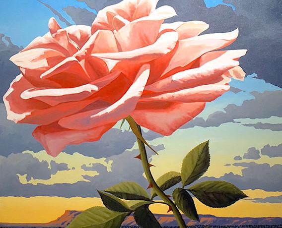 Northern Rose