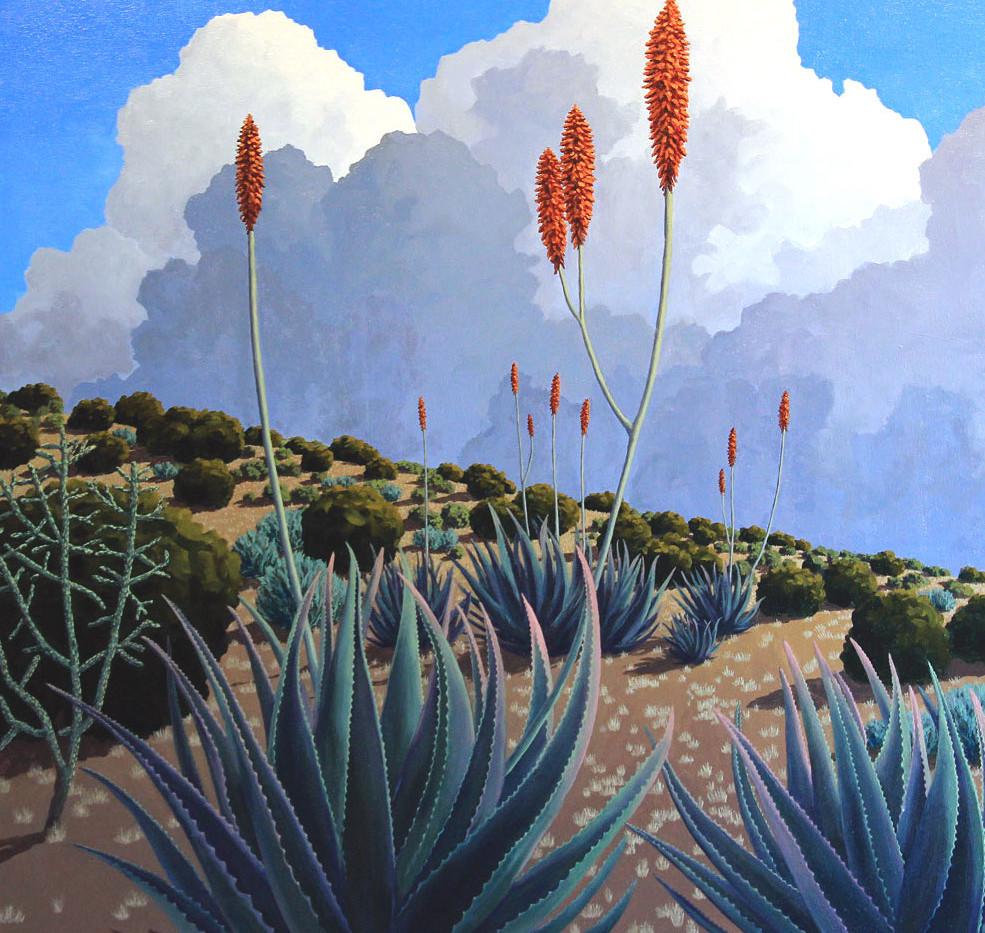 Ridgeline Bloom