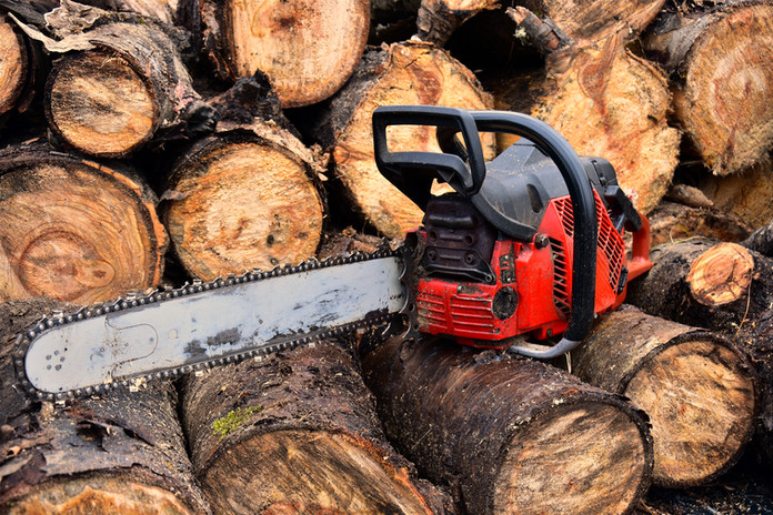 Chainsaw with Logs.jpg