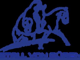 Sie möchten Ihr Pferd in eine pferdegerechte, individuelle und seriöse Ausbildung geben?