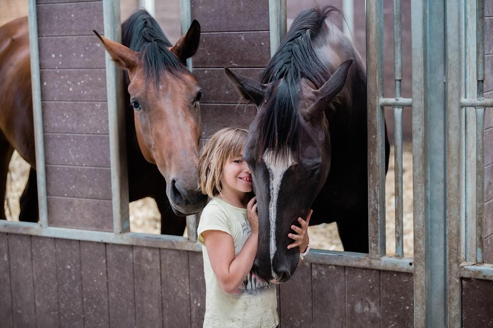Paja und Galine - Stall von Büren - Pferdezucht