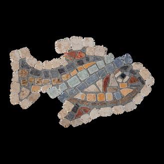 Mango Tilapia / Galilee St. Peter's Fish (G)