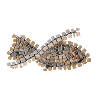 Blue Tilapia / Jordan St. Peter's Fish (F)