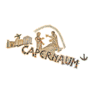 Healing the paralytic (Capernaum)