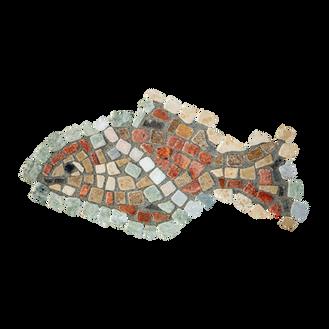 Mango Tilapia / Galilee St. Peter's Fish (C)