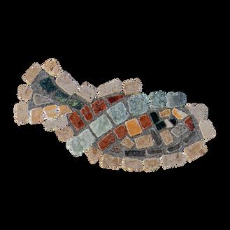 Mango Tilapia / Galilee St. Peter's Fish (F)