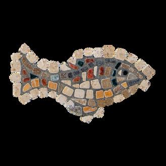 Mango Tilapia / Galilee St. Peter's Fish (H)