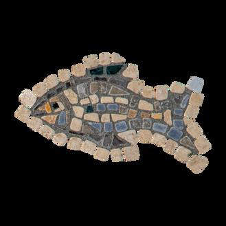 Blue Tilapia / Jordan St. Peter's Fish (E)