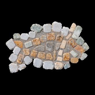 Mango Tilapia / Galilee St. Peter's Fish (A)