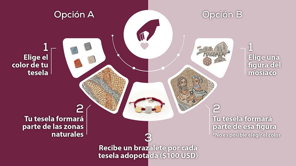 Infographic_Magdala-Benefactor_MM-1.jpg