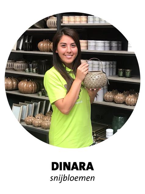 Dinara.jpg