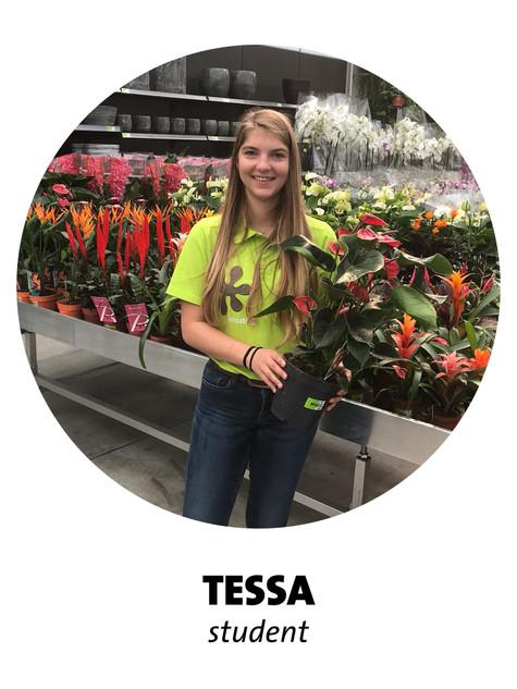 Tessa.jpg
