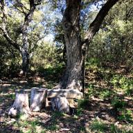 Le coin de picnic