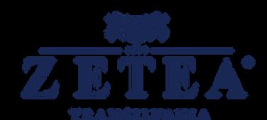 Zetea - logo.png