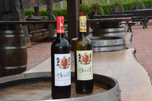 Selgros lansează în exclusivitate vinul Grand Appetit, produs de către Cramele Recaș