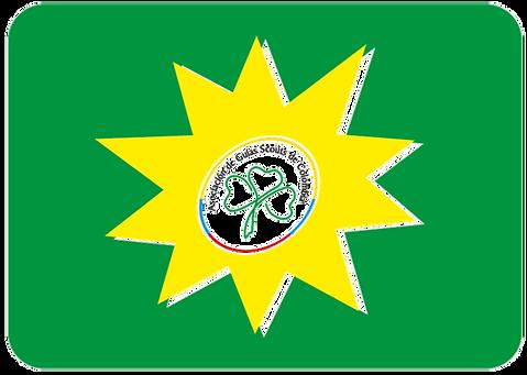Bandera Nacional.png